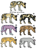 (closed) One Point African Wild Dog Adoptables by lnconvenient
