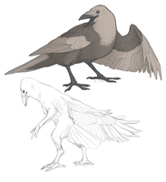 Crow character by tashcrow