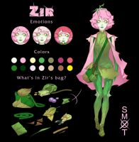Zir reference by Smoxt