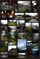 A Week Within Portland by JMFenner91