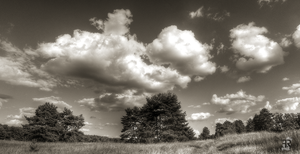 Summer Vintage Clouds by FilipR8