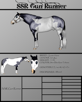 .:SSR Gun Runner-7 Time Hall Of Fame Stallion:. by Shining-Spurs-Ranch