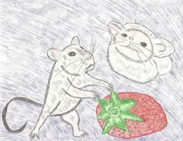 Rat, Mouse and Strawberry by LindArtz