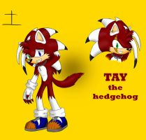 Tay the hedgehog by SBtheWolf12
