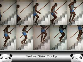 Fred and Stairs TU by Ahrum-Stock
