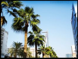 Bahrain trees by thedrummerboii
