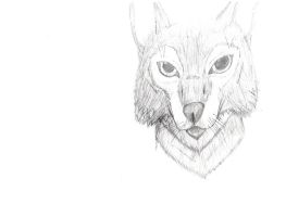 Wolf Practice v1 by Specter1099