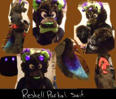 Reskell partial suit by Pokepaws