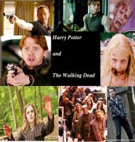 Harry Potter And The Walking Dead by aprilraindelain
