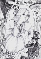 Alice in Wonderland by Alu-Fraulein