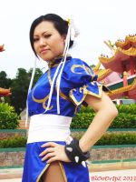 Chun Li Pose 18 by BlOoDrIpZ