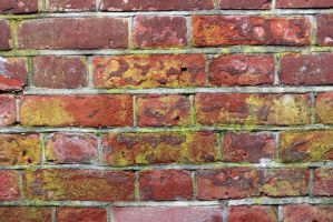 Victorian Mossy Red Brick Stck by aegiandyad