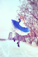 alice in wonderland by NatalieCartman