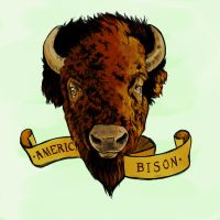 American Bison by blindthistle