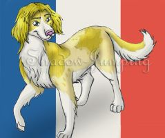 France by Shadow-jumping