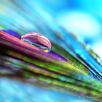 Rush of Colors by Healzo