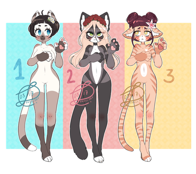 ADOPTABLES - Flower Cats [OPEN] by Fasli