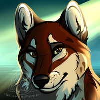 BR - Erin Icon by SemperFerus