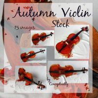 Autumn violin stock by conceptually
