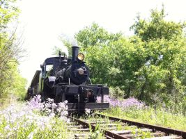 Scent of Flowers and Steam by UnionPacific7004