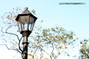 Street light by basurero712