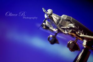 On Silver Wings (color version) by OliverBPhotography