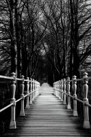 Little bridge in the park by pegico