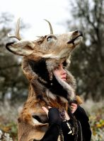 Deer Skin Headdress by NaturePunk