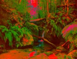 Psychedelic Jungle by TheGerm84