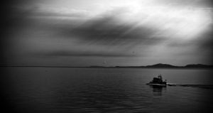 Looking for whales in Saint Lawrence river by PasoLibre