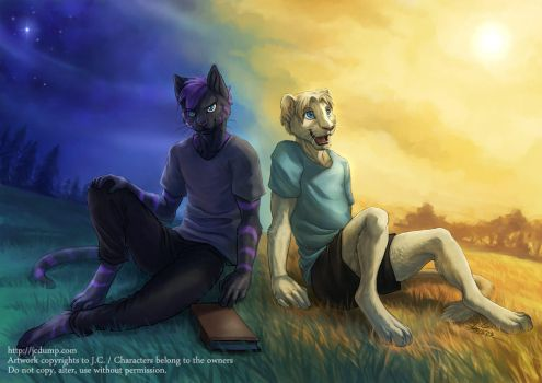Night and day by J-C