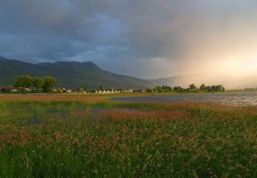 Salmon Arm by infinityloop