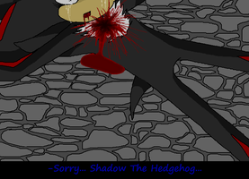 Sorry... Shadow The Hedgehog... by SonikClassik