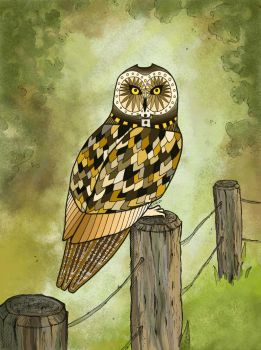 Owl sitting on a fence by NaliZen