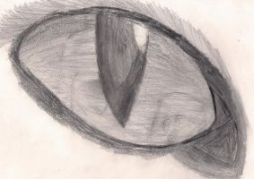 The Eye of the Lynx by Flame-Wing