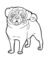 Pug by CandyBeeLinearts