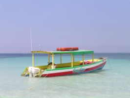 Jamaican Snorkel Boat by cloudwatcher1