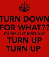 Turn Down For What?? Its my 21ST BIRTHDAY!!! by ThexRealxBanks