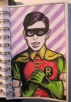 Robin - The Boy Wonder by mikegee777