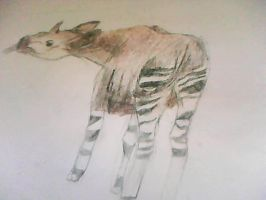 okapi by evildollie