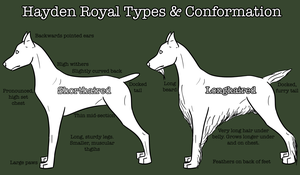 The Hayden Royal: Types and Conformation by Sommer-Studios