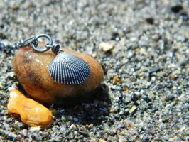 Shell of the Sea -Clam -Fine Silver- by QuintessentialArts