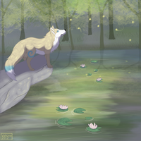 Firefly Forest by Valiona
