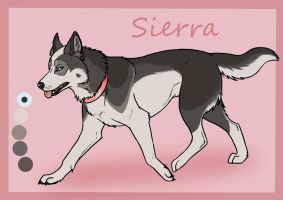 SK's Diamonds Are Forever: Sierra by Sedillo-Kennels