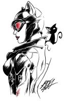 Catwoman by FalkSMASH