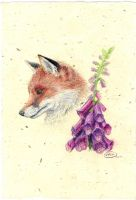 Fox among the Foxgloves by heavenhel