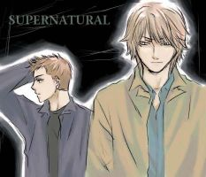 Supernatural-Dean and Sam by keterk