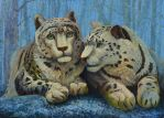 Snow leopards: thoughts about spring by AldemButcher