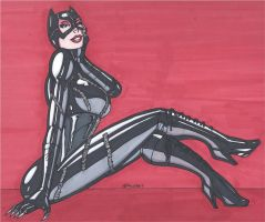 Catwoman- Meow by RobertMacQuarrie1