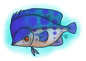 Hunched Butterfly Fish by commander-salamander